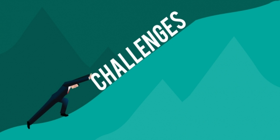 Project Management & Challenges